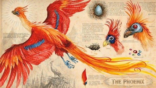 Una nueva ilustración de Harry potter y la Cámara Secreta