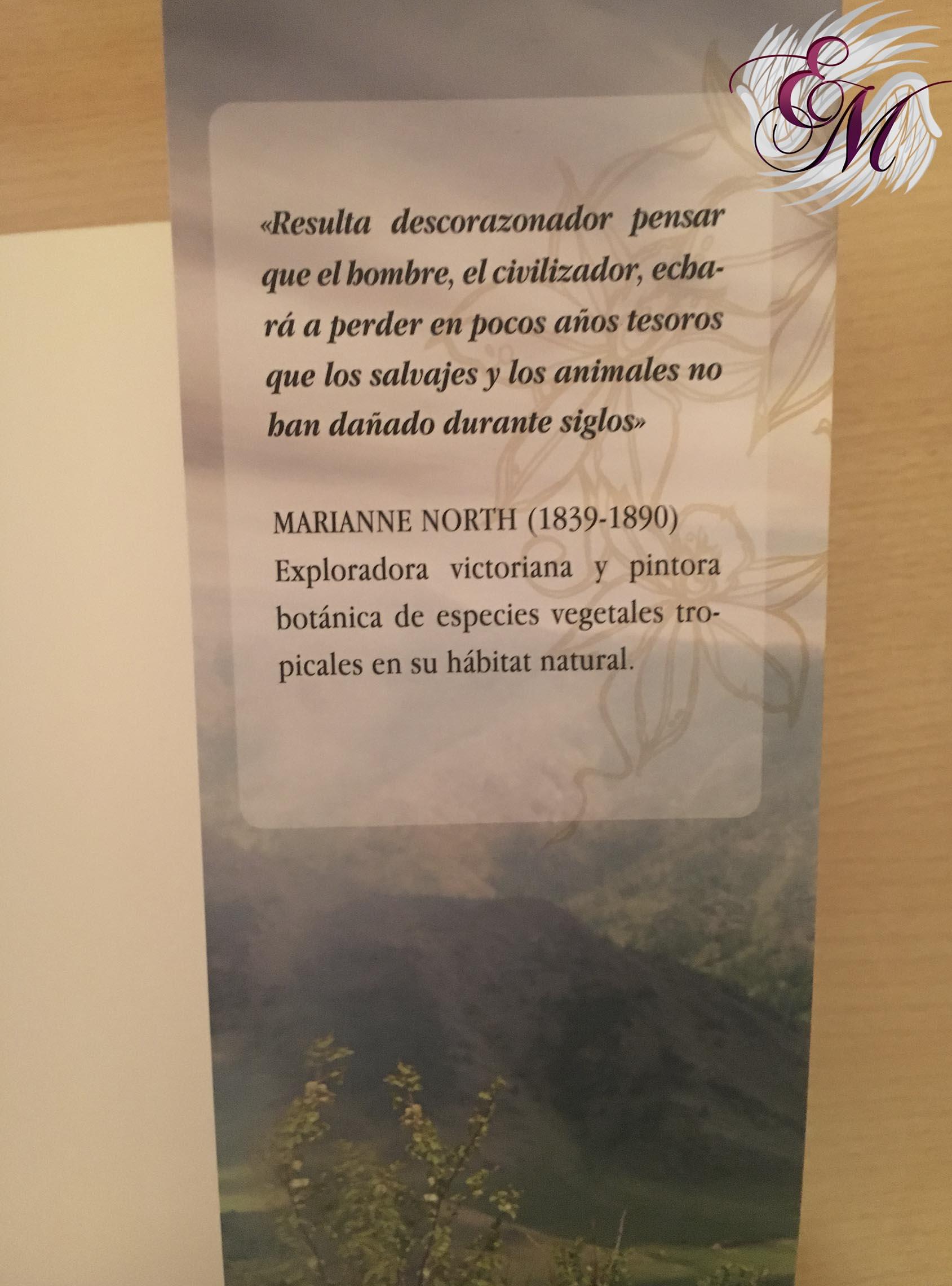 La orquídea prohibida, de Sharon Biggs Waller - Reseña