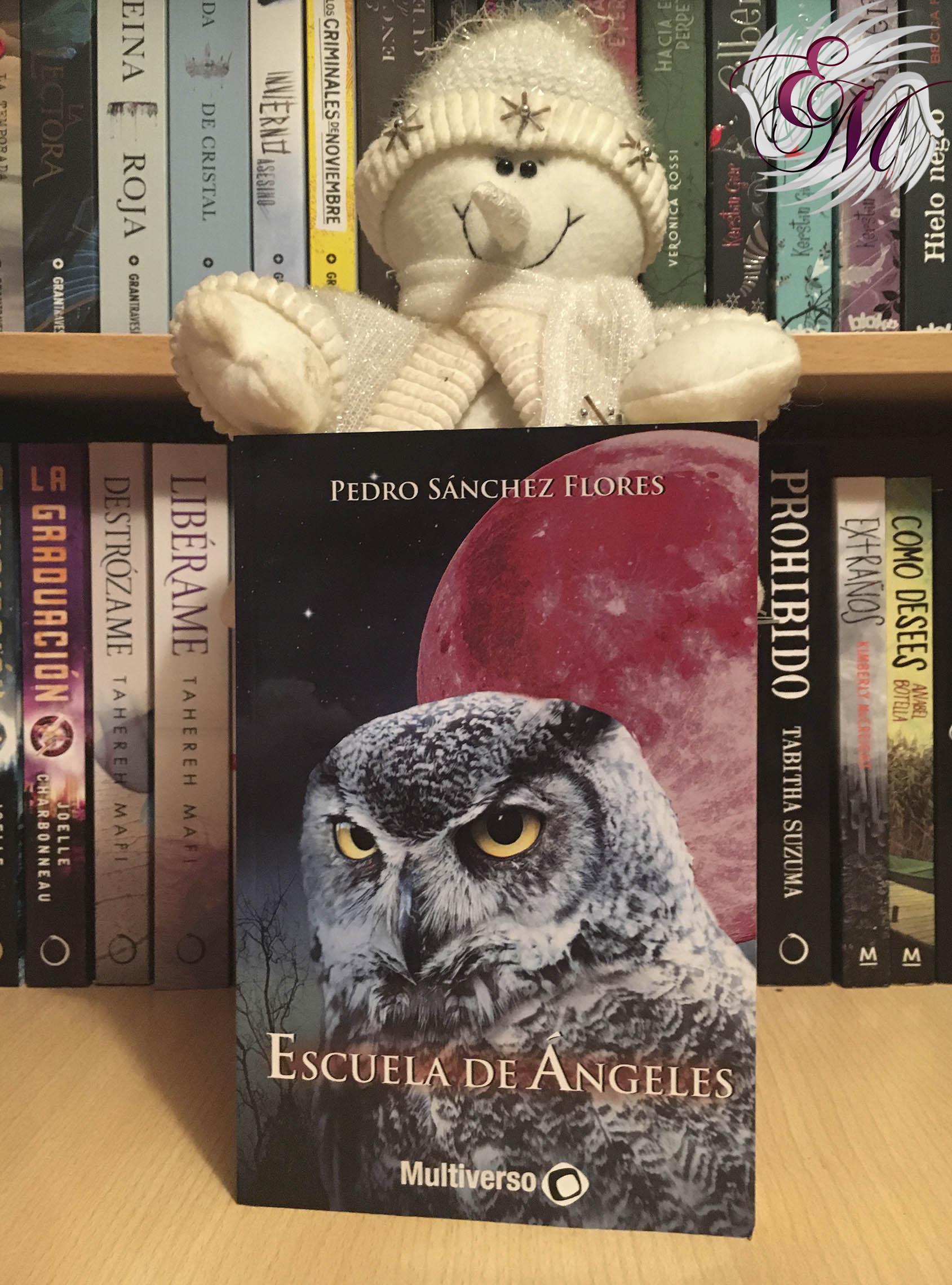 Escuela de Ángeles, de Pedro Sánchez Flores - Reseña