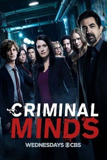 Crítica de Serie de TV: Mentes criminales
