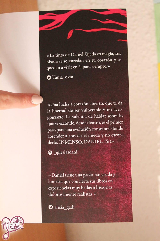 Como si nadie nos estuviera mirando, de Daniel Ojeda - Reseña