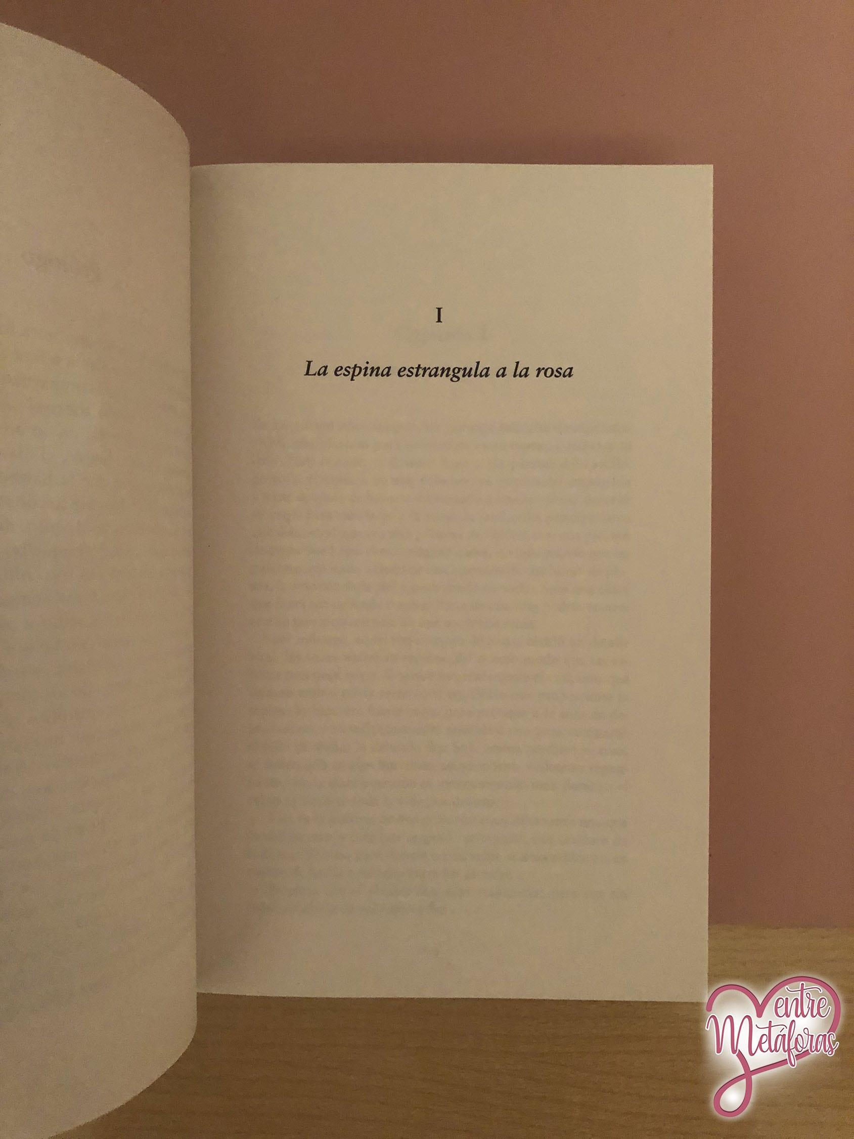 Silencios, de A.G. Howard - Reseña