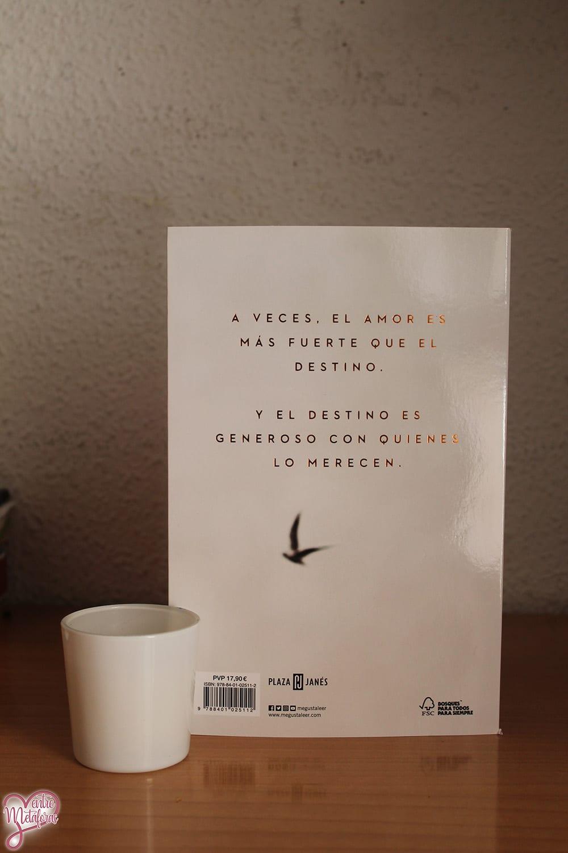 El vuelo de la mariposa, de David Olivas - Reseña